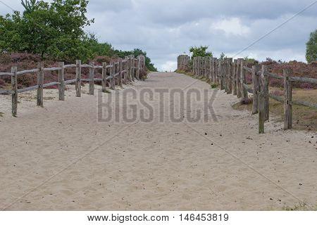 Frensham Common sand dunes at Frensham in Surrey