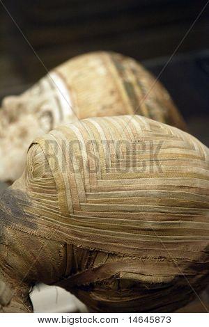 Egyptian mummy close up