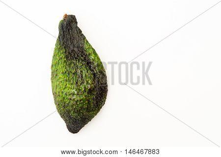 Dried Shell Of Avocado