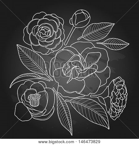 Graphic camellia set isolated on chalkboard. Vector floral design