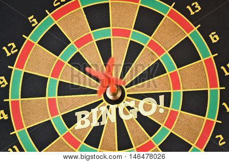 Word Bingo written on the circular target with a plastic feather in the center