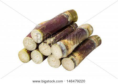 isolated sugar cane on the white background