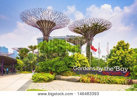 SINGAPORE - SEPTEMBER 5, 2015: Supertrees at Gardens by the Bay. The tree-like structures are fitted with environmental technologies that mimic the ecological function of trees.