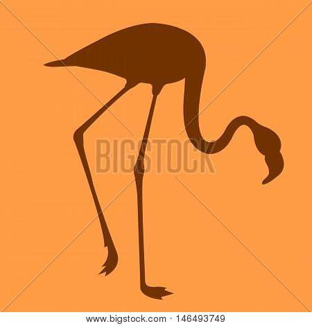 Pink flamingos vector illustration  flat style side