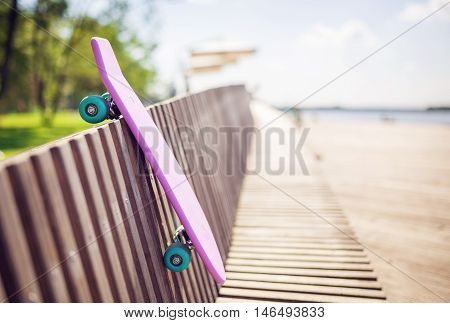 Shortboard On The Bench