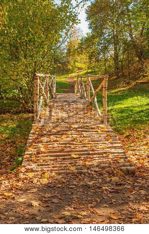 Autumn forest landscape with road and wooden bridge