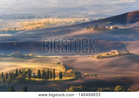 Rural Landscape With Cypress