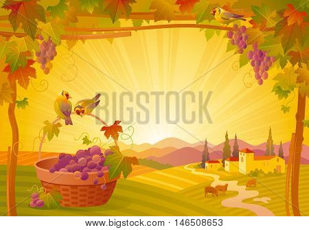 Vector thanksgiving illustration, beautiful autumn landscape on sunny modern elegant background, vineyard, copy space. Countryside fall farm symbol, grapes fruit, picnic basket, goldfinch birds
