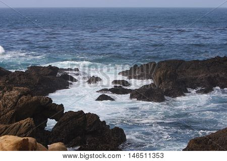 This is an image of volcanic rocks just off shore at Point Lobos State Preserve in Carmel, California.