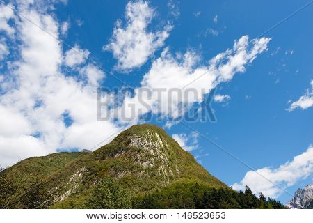 Peak with a green forest in Slovenian Alps in the Triglav National Park Slovenia Europe