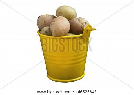 Potatoes fresh in yellow pail insulated on white background