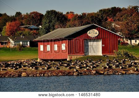 Lancaster County Pennsylvania - October 15 2015: Flocks of Canada geese nesting in front of the Hotel Hai Camp & Retreat Boathouse overlooking a small pond