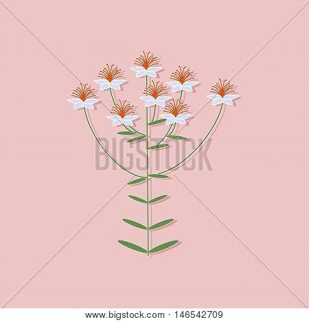 paper sticker on stylish background of plant Hypericum