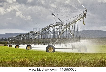 Farm Irrigation Sprinkler In Field