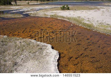 Hot Lake - Yellowstone National Park