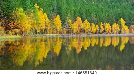 Panoramic view over a fall landscape reflected in Saint Ana volcanic lake, in Tusnad, Romania