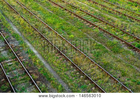 Railway tracks at the station the overgrown summer grass