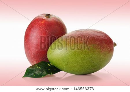 Image of mango fruit studio isolated on white background