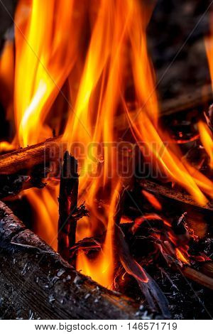 The burning of the fire in a pile of firewood