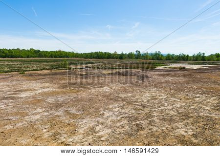 Soos is a post-volcanic conservation area in the north Czech Republic near Frantiskovy Lazne. In this reserve bog is combined with moffetes, mud volcanoes and hot springs.