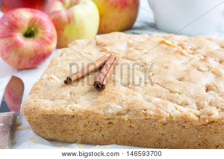 Homemade blondie (blonde) brownies apple cake on parchment horizontal