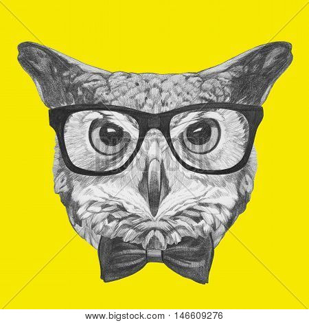 Original drawing of Owl with glasses and bow tie. Isolated on colored background.