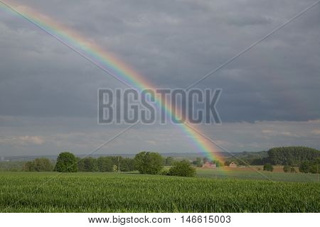 Rainbow Green Field