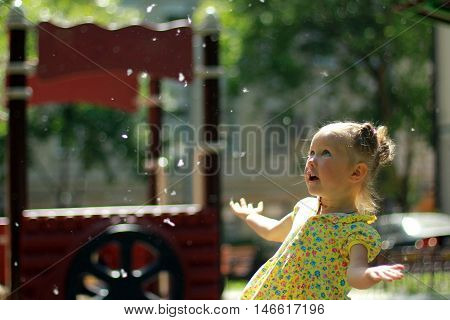 Little girl plays with poplar fluff in park
