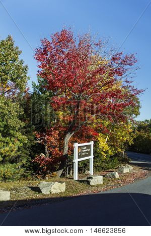Colorful maple leaf trees during Indian Summer in the Acadia National Park in Bar Harbor (Maine USA) the entrance sign of the national park is in front
