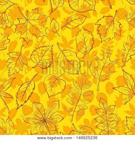 Seamless Leaves Contour Silhouettes Dogrose, Oak Iberian Oak, Maple, Liquidambar, Hawthorn, Poplar Silver, Hazel, Elm, Birch, Linden, Rowan, Chestnut, Buckeye, Viburnum, Chokeberry, Lilac, Teak Vector