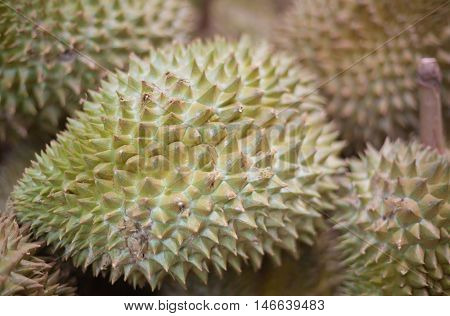 durian is king of fruit in Thailand