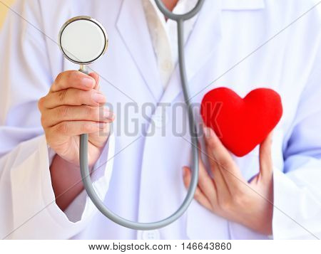 Doctor holding heart in hand, heart healthy concept