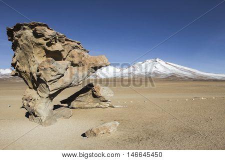 Rock Formation In Uyuni, Bolivia Known As Arbol De Piedra