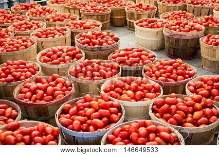 Many Roma Tomatoes In Baskets At The Market