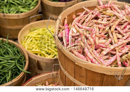 Different Types Of Beans At The Market : Cranberry Beans, Green Beans And Butter Beans