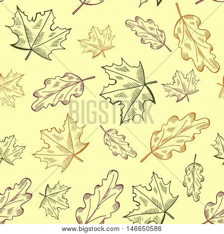 Vector seamless autumn pattern with hand drawn leaves illustrations. Doodle maple and oak leaves pattern