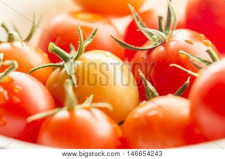 Macro image of cherry tomatoes. A close up image of ripe cherry tomatoes in bright light.