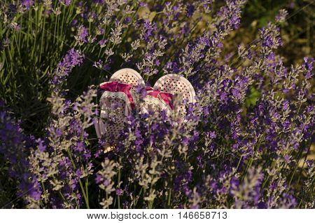 Cute pink baby shoes in lavender field
