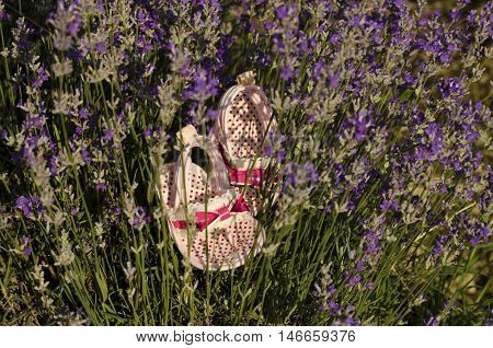 Lavender stems and pink baby girl shoes