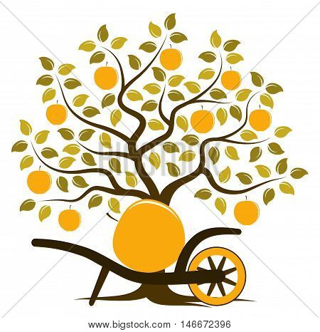 vector apple tree and hand barrow with one big apple isolated on white background