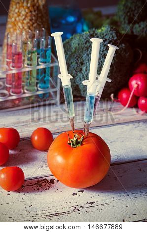 Three Syringes In Tomato. Genetically Modified Food Concept.