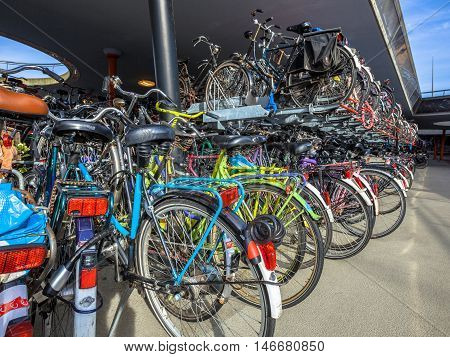 Lots Of Parked Bicycles