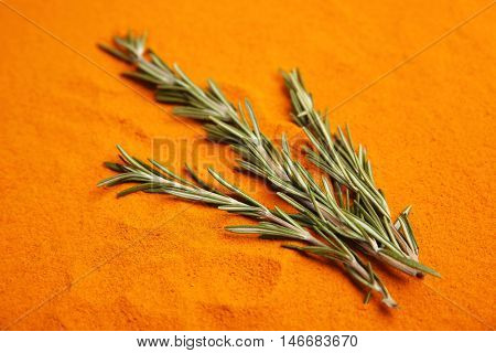 Fresh rosemary on color spice background