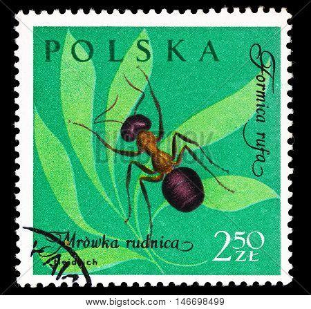 Poland - Circa 1961
