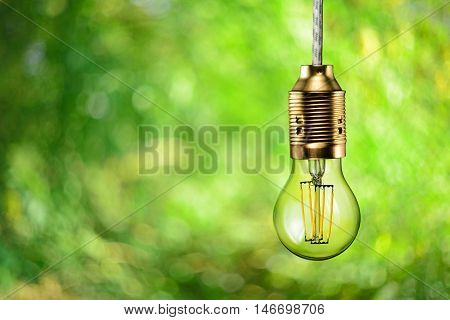 Led Filament Ecologic Bulb