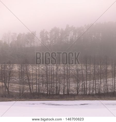 Nature autumn or winter landscape. Countryside view frosty hilly fields with trees overcast foggy day