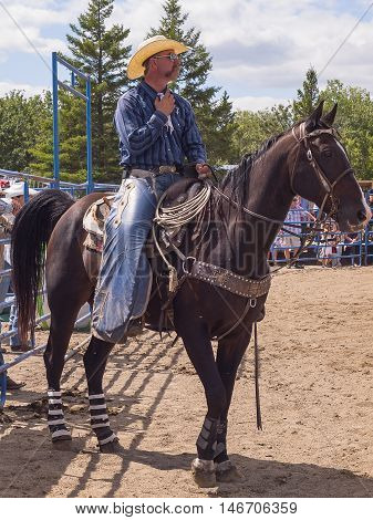 Cowboy sitting on the horse. Rodeo. Winnipeg.Canada.