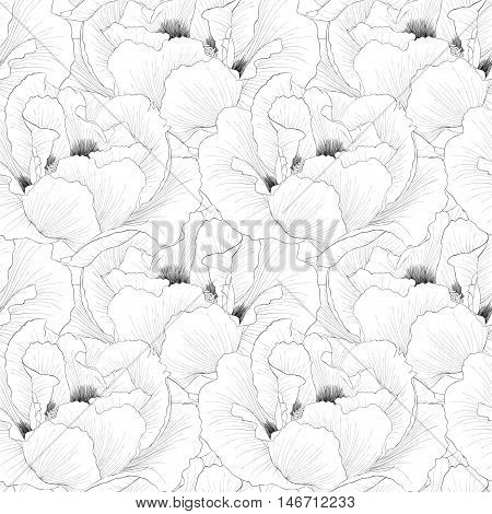 Beautiful monochrome black and white seamless background with flowers Plant Paeonia arborea (Tree peony). Hand-drawn contour lines and strokes.