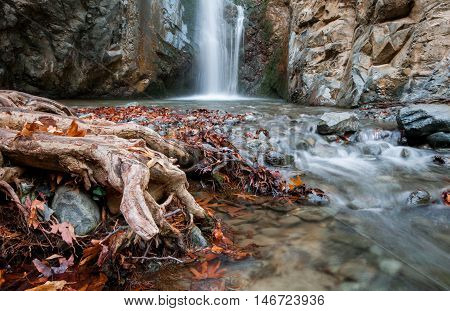 Waterfall splashing on a small lake with beautiful yellow leaves and tree roots. Waterfall is Millommeri located near Platres village at at the mountain range of Troodos in Cyprus