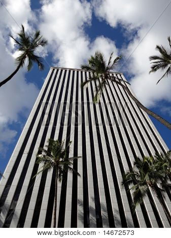Looking Up At Modern Office Building In Honolulu With Tall Palm Trees